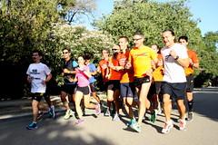 IMG_6631 (Atrapa tu foto) Tags: zaragoza atletismo maratn liebres atrapatufoto maratnzaragoza2013