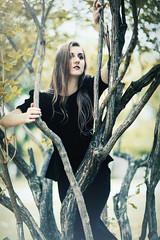 Adrianna (banegool) Tags: portrait woman model woods dof bokeh branches blackdress