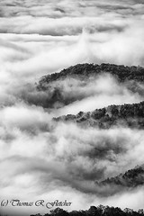 View of Foggy Valley along the Highland Scenic Highway (travelphotographer2003) Tags: autumn blackandwhite bw usa fall weather misty fog clouds foggy westvirginia relaxation exploration idyllic appalachia blackmountain freshness appalachianmountains purity tranquilscene alleghenymountains beautyinnature route150 pocahontascounty nationalscenicbyway highlandscenichighway