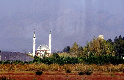A village mosque from the coach (mountains just visible)