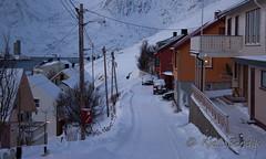 side street (kjellbendik) Tags: norge vinter himmel hus sne finnmark facebook honningsvg bygning magerya byggning naturoglandskap snesn kjellbendikgmailcom