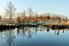 a beautiful winter day (cre8ive-M) Tags: winter ngc npc houten natuurspeeltuin speelbosnieuwwulven