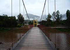 (paulmayca) Tags: peru forest landscapes selva jungle rios bosques oxapampa selvaperuana peruvianjungle junglelandscapes provinciaoxapampa