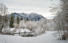 Snowy Linderhof, Bavaria Germany (15 December 2013) (Mac Qin) Tags: leica winter sky snow art beautiful germany landscape bavaria amazing woods europe europetour winterscene snowyvillage snowylandscapes leicas2 vision:mountain=09 vision:ocean=0552 vision:outdoor=0989 vision:snow=0814 vision:sky=0771