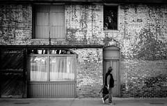 _DSF1819.jpg (APS-Photo) Tags: street pasadena oldtowne