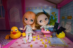 Blythe a Day 08 May 2014 - Rubber Ducks