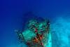 Sunken (Lehnerya) Tags: life blue house water cool asia ship awesome dive diving snorkeling tropical waters sunken reef fishes maldives newlife housereef kuredu skepp