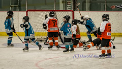 Goal! (ausmc_1) Tags: canada ice hockey britishcolumbia vancouverisland sharks february brynn novice lakecowichan 2015 hockeytournament nikon300f4 nikond800