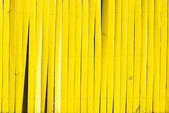 Yellow Fix (Nolte Photo) Tags: wood usa broken colors lines yellow canon fence tampa 50mm colours tampabay florida ef50mmf18ii tampafl ef50mm braedenton 60d canoneos60d eos60d braedentonfl