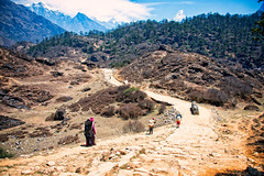 Heavy loads for the Porters in the Everest Region (CamelKW) Tags: nepal people mountain trekking porter everest himalayas 2016 hardship everestregion everestpanoram