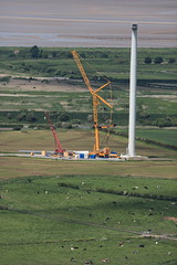 Wind turbine construction on Frodsham marshes, Cheshire, England. (bm1551cc) Tags: camera canon river lens site construction cows wind crane hill l 5d turbine mersey 400mm mark2 helsby frodsham