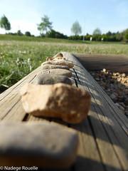 Cailloux sur bois (Daegen Sonderuse) Tags: flou coucherdesoleil caillou mercurey
