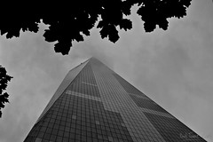 One World Trade Center II (Paal Tonne) Tags: world new york city nyc bw usa white ny black never monochrome up look that manhattan united center wtc states sleeps trade tonne paal paaltonnecom