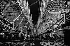lets go shopping II (Zesk MF) Tags: bw white abstract black lines metal shopping nikon sigma rolls cart 8mm einkaufswagen rollen wagen zesk