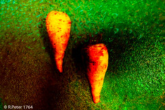 parsnips 4121 (R-Pe) Tags: show camera abstract canon photo nikon foto fotografie photographie sony picture pic exhibition peter gift bild geschenk ausstellung aufnahme melancholie 1764 rpe rbi 1764org www1764org