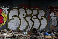 graffiti breukelen (wojofoto) Tags: holland graffiti nederland spies breukelen wolfgangjosten wojofoto