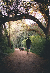 179A2490-1-2 (den_ise11) Tags: trees shadow dog dark outdoors riverside hiking hike idaho boise trail