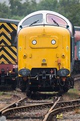 (deltic17) Tags: diesel napier pinza deltic englishelectric barrowhill royalscotsgrey 55022 barrowhillroundhouse 55007 heritagediesel 0z55