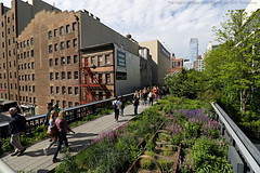 The Highline Park / 18.05.16 (Schumny) Tags: park new york city nyc travel usa america train chelsea manhattan united eisenbahn railway trains stadt states amerika bahn gleise highline reise staaten hochbahn vereinigte