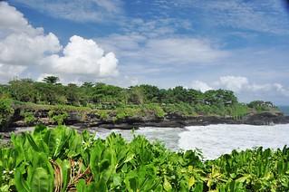 bali nord - indonesie 40