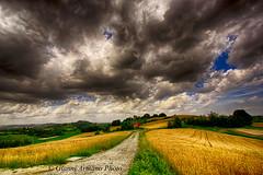 Il privilegio di trovarsi in mezzo alla natura (Gianni Armano) Tags: photo casa san italia foto valle natura il piemonte di gianni alla collina alessandria grano bartolomeo stradina campi rossa gialla mezzo privilegio armano trovarsi