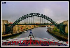Newcastle (Zubair Yousaf) Tags: bridge pakistan light england sky art nature beautiful st by work studio newcastle lens photography nikon sage tyne millennium ne gateshead professional subject portfolio yousaf zubair d5200 zubairyousaf wwwzubairyousafweeblycom