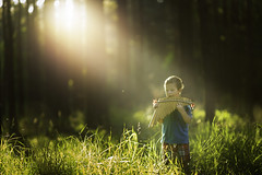 The Forest's Lullaby (Phillip Haumesser Photography) Tags: light boy music sunlight playing green nature boys kids forest children fun kid woods child play natural magic adventure instrument imagination phillip magical sunbeams haumesser