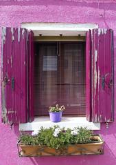Ventana de Burano (John LaMotte) Tags: ventana venecia venezia venice fentre fachada janela burano rosa italia infinitexposure