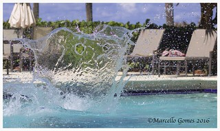 Splash Monster Emerges from Pool Unexpectedly...