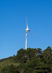Wind Turbine (hmxhm) Tags: newzealand nature olympus wellington aotearoa windturbine zealandia