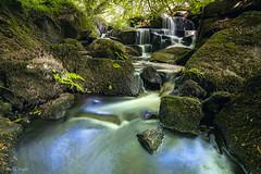 Hidden falls (Traezh) Tags: france water forest eau bretagne rivire falls breizh pascal cascade fort torrent finistre lutins korrigans laugier pennarbed argoat saintherbot ellez loqueffret 1635f4l
