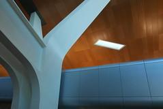 P1050084 (tyler.langenbrunner) Tags: airport international hamad