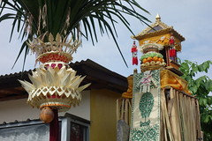 DSC00192 (Peripatete) Tags: family bali nature festival fruit prayer religion ceremony hindu ubud offerings galungan penjor
