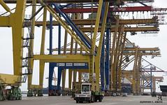 _DSC0123 (Alfonso C. Orive) Tags: tren puerto container contenedores gruas puertoseco alfonsocorive