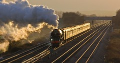 Sunset Steam (paul_braybrook) Tags: 60163 tornado lner classa1 steamlocomotive coltonjunction northyorkshire kingscross york railway railtour steamdreams sunset