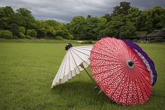 Okayama (Gorka Zarate) Tags: naturaleza color nature umbrella landscape nikon culture paisaje vida paraguas castillo cultura okayama saturacion d7100 nikonflickraward