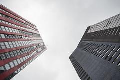 (Arthur van Beveren) Tags: nederland netherlands niederlande holland paysbas hollanda paesibassi paisesbajos rotterdam roffa rotjeknor city stad street straat nikon red apple wijnhaveneiland leuvekwartier centrum centre wolkenkrabber skyscraper