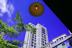 (Akiraliu2014) Tags: leica sky cloud film 35mm flavor outdoor moment       m240  leicamp summiluxm 14f  bokeh fun