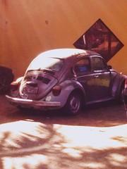 Nostalgia #Fusca #Nostlgico #SonhoDeConsumo (Atravs da lente) Tags: fusca sonhodeconsumo nostlgico