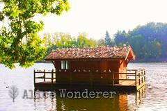 Huisje in meer (Alice_Wonderer) Tags: house lake water cabin meer vogels sunny huisje daiza zonnig pairi