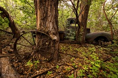 Wheel and Old Truck (Terry L Richmond) Tags: old classic truck vintage woods canon1740 steelwheel canon6d