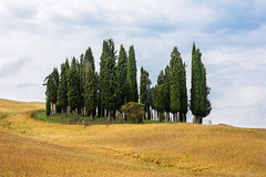Val d'Orcia (Martin Zurek) Tags: travel italy zeiss canon landscape val tuscany toscana valdorcia ze otus dorcia otus1485 5dsr