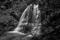 Waterfall Schliersee 6 bw (xdbooking) Tags: germany bavaria waterfall wasserfall waterfalls schliersee xdarts