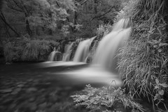 Lathkill Dale Waterfall (George Collins Photography) Tags: blackwhite water nature peakdistrict lathkilldale canon6d canon cokin cokin89b