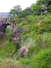 La Roche Percée, près de Pierre-Perthuis (toucanne) Tags: hill granite wildflowers steep
