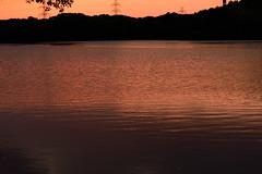 50Yamada Pond Park (anglo10) Tags: sunset japan