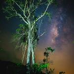 Milky Way @ Tan Sadet