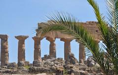 Visit Selinunte (morgana 21) Tags: pietra azzurro templo sicilia colonne colonna greco selinunte capitello belice dorico castelvetrano cartagine macchiamediterranea parcoarcheologico marecielo italiaitalyitalie cittagreca