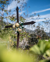 Cross in Graveyard (alexmerwin13) Tags: trip flowers italy plant flower nature graveyard religious cross it terre environment cinqueterre spiritual lombardia cinque 2016 mezzanabigli italy2016trip
