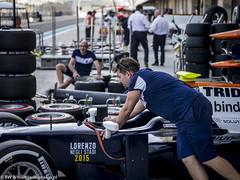 2015 Abu Dhabi GP: Trident (8w6thgear) Tags: grandprix abudhabi mechanic paddock pitlane trident 2015 gp2 gp3 dallara gp211 mecachrome
